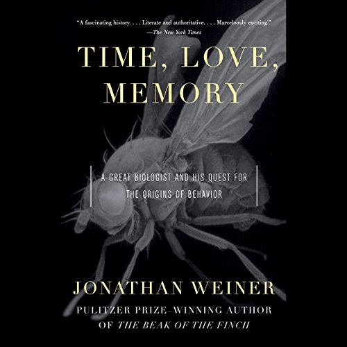 Time, Love, Memory audiobook cover art