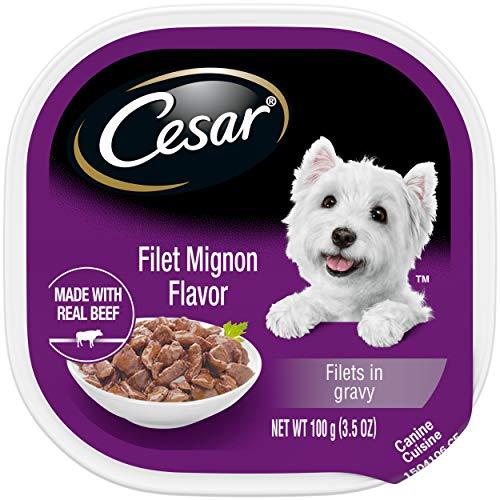 CESAR Adult Soft Wet Dog Food Filets in Gravy Filet Mignon Flavor, (24) 3.5 oz. Trays