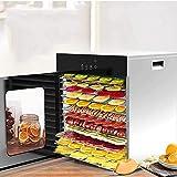 LJJOO Deshidratador de alimentos, secador de energía 24 horas, microcomputador inteligente, secador de frutas, doble aislamiento en acero inoxidable, comercial, 12 capas-negro Deshidratadores