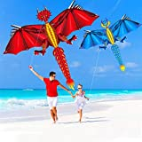 JSJJAYH Cometa Fun Juguete al Aire Libre Caliente 160 cm / 64 Pulgadas Viento LED Kite para niños Adultos con asa y línea Buen Vuelo Exterior (Colore : Ice, Spedito da : China)