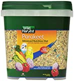 Bird Food For Parakeets
