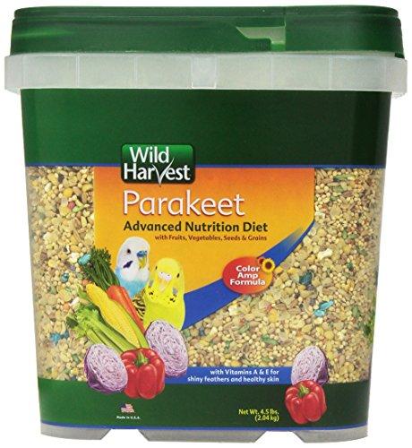Wild Harvest Wh-83540 Wild Harvest Advanced Nutrition Diet For Nutrition Diet For Parakeets,...