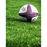 Sport Rugby Ball Field World Cup Photo Unframed Wall Art Print Poster Home Decor Premium Ballon Champ Monde Photographier Mur Affiche Accueil Déco