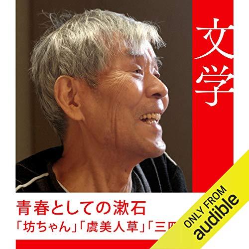 『青春としての漱石-「坊ちゃん」『虞美人草』『三四郎』』のカバーアート