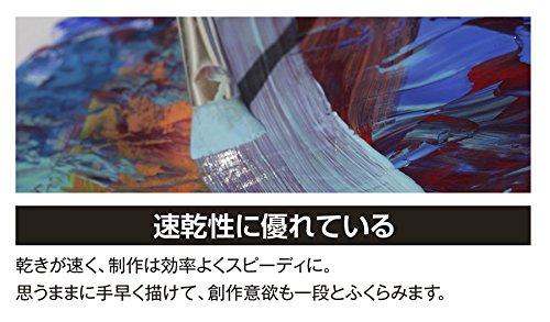 ターナー色彩『アクリルガッシュ12色セット(AG12C)』