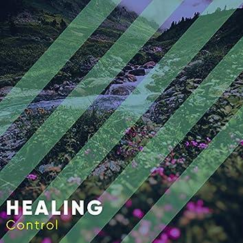 # 1 Album: Healing Control