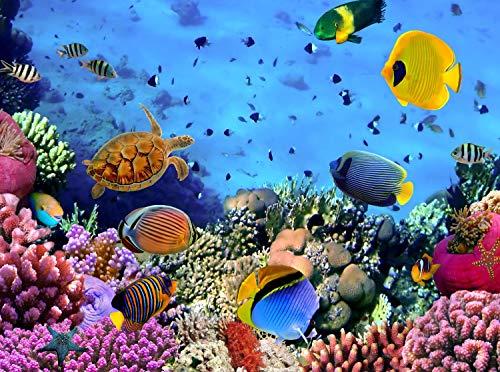 wandmotiv24 Fototapete Korallenriff mit Fischen Größe: 350 x 260 cm Wandbild, Motivtapete, Vlietapete KTk480