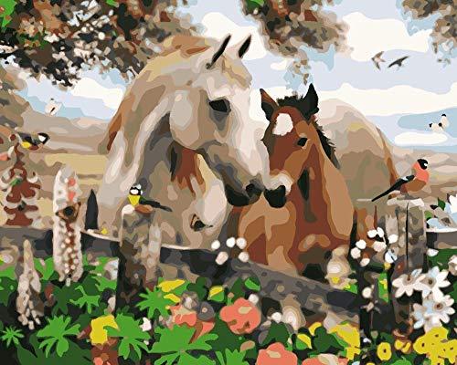 DIY Olieverfschilderij door cijfers Kits Thema Digitale Olieverfschilderij Canvas Kits voor Volwassenen Kinderen Verjaardag Bruiloft of Nieuwe Accommodatie Kerst Decor Decoraties Paard