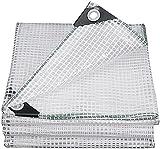 DPPAN Lona Impermeable Transparente Exterior, Lonas Transparentes...