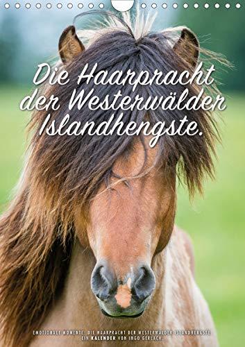Die Haarpracht der Islandhengste. (Wandkalender 2021 DIN A4 hoch)