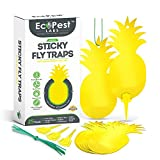 ECOPEST Sticky Fruit Fly and Gnat Traps – 25 Pack   Yellow Fly Paper Trap for House Plants and Gnat Sticky Traps for Fruit Flies, Fungus Gnats, and Other Flying Insects   Indoor and Outdoor Fly Tape