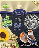 Lyra Pet® 25 kg Sonnenblumenkerne 25000 g gestreift Vogelfutter Winterfutter Streufutter HK Deutschland Ernte 2020