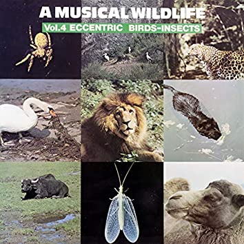 A Musical Wildlife, Vol. 4: Eccentric Birds-Insects