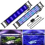 BELLALICHT Aquarium LED Beleuchtung mit verstellbarer Halterung, Timer, dimmbare Aquariumbeleuchtung Weiß Blau Rot Grün