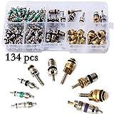 BAODANH Assortiment de 134 valves A/C R134A pour climatisation automobile