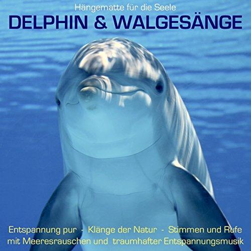 Delphin & Walgesänge - Hängematte für die Seele: Klänge der Natur - Stimmen und Rufe mit Meeresrauschen und traumhafter Entspannungsmusik