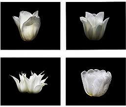 White Tulip Wall Art, 8