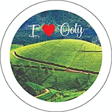 Toys On Hills Amazing OOTY Fridge Magnet- Metal Muticolour ( A Pack of 1 )