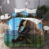 Juego de Funda nórdica para Cama, Elefante Divertido Animal se baña en el mar, Microfibra con 2 Fundas de Almohada 50x80