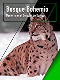 Bosque bohemio - Desierto en el Corazón de Europa