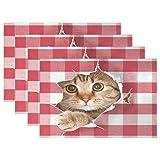 vinlin Britische Katze hitzebeständige Tischsets 30,5 x 45,7 cm Küche Esstisch Platzset Tellerhalter Multi, 6 Stück,Set for 6