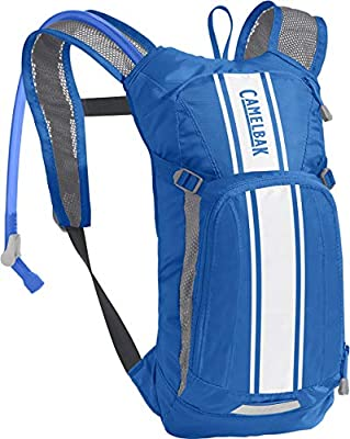CamelBak Mini M.U.L.E. Kids' Hydration Backpack - 50 oz Lapis Blue/White Stripe