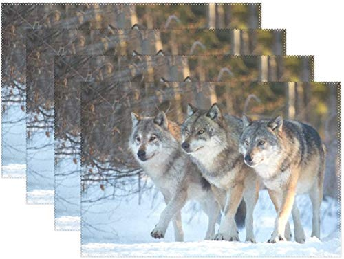 HEOH Manteles Individuales de 12 x 18 Pulgadas, Juego de 6, Tabla de poliéster de Invierno Snow Wolf Table Mat para Cocina Comedor para niños