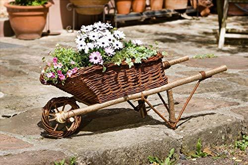 Deko Schubkarre aus Holz & Weide zum Bepflanzen, Blumenkübel, Pflanzkasten