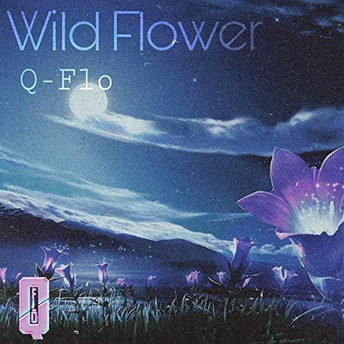 Q-Flo