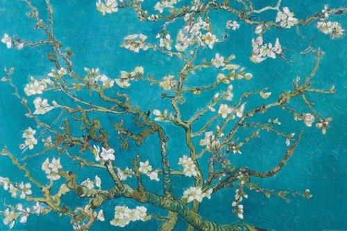 """Gran laminados cartel """"Van Gogh - almendro en flor San Remy"""" - tamaño 91.5 x 61 cm (aproximadamente)"""