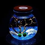 Kit de acuario con LED Marimo, piedras de cristal azul, ventilador de rama de coral y conchas, decoración de escritorio de oficina, centro de mesa, regalos únicos de cumpleaños