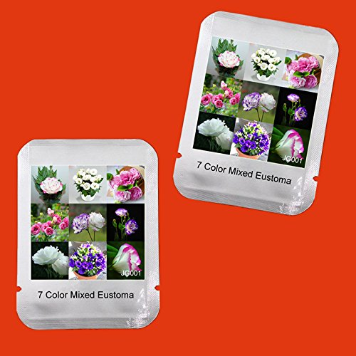 Vente chaude! 100 PCS 7 couleurs mélangées Eustoma Graines Plantes vivaces à fleurs en pot Fleurs Graines, Emballage professionnel, # JG001