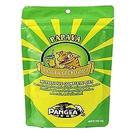 Pangea Papaya Fruit Mix Complete Crested Gecko Food  – 2oz