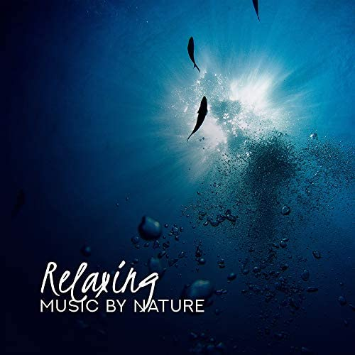 Serenity Nature Sounds Academy, Ministry of Relaxation Music & Rest & Relax Nature Sounds Artists