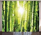 ABAKUHAUS asiático Cortinas, Vigas de Sun en la Selva Salvaje, Sala de Estar Dormitorio Cortinas Ventana Set de Dos Paños, 280 x 225 cm, Cal Verde Amarillo