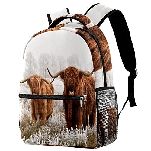 Zaino per zainetto da viaggio zainetto leggero per ragazzi e ragazze adolescenti Parco nazionale scozzese Highlanders Stampa a sacco