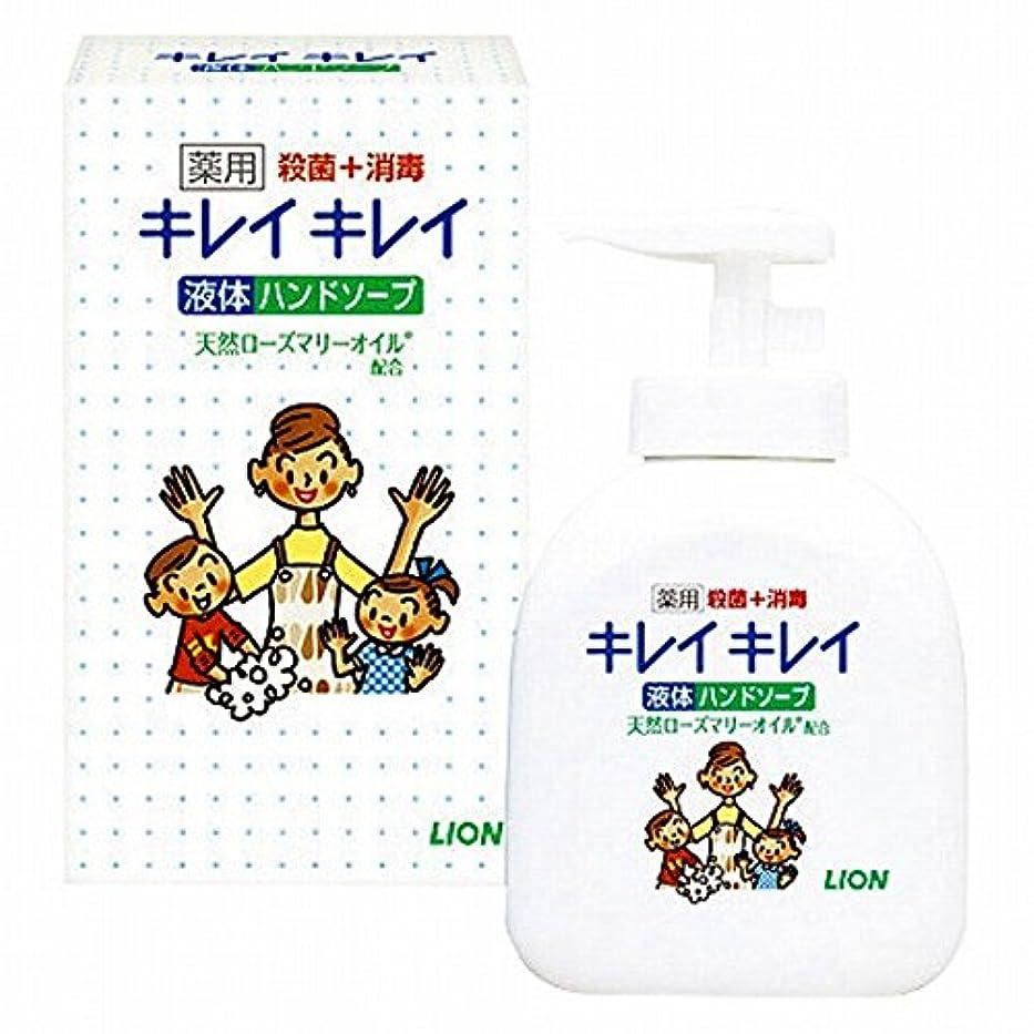 お風呂を持っている活力構想するLION(ライオン) ライオン キレイキレイ薬用ハンドソープ250ml(21956510)