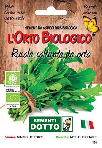 Sdd O.Bio_Rucola Coltivata da Orto Semi, 0.02x15.5x10.8 cm