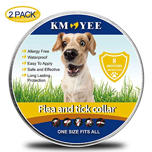 KMOYEE Collar for Dogs, 8 Months Treatment and Prevention,100% Natural Ingredients, Waterproof, Adjustable Design-One Size Fits All (2 Pack)