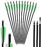Kavard Armbrustpfeile 20 Zoll Carbonpfeile für Bogenschießen für Armbrust Jagdp mit 4zoll Kunststoffbefiederung für Bogenschießen Schießübungen Jagdschießen 12 Stück