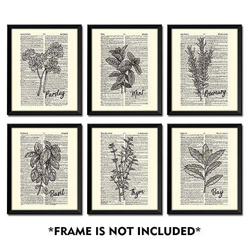 Sumgar Stampa artistica di pagina di dizionario con foglie verdi, per soggiorno, senza cornice, su carta riciclata vintage, Erbe aromatiche, 20x25cmx6p