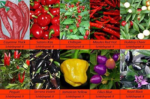 Feinschmecker Chili Samen, Sehr Scharf, 10 Sorten Schärfe 8-9