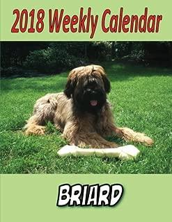 Best briard calendar 2018 Reviews