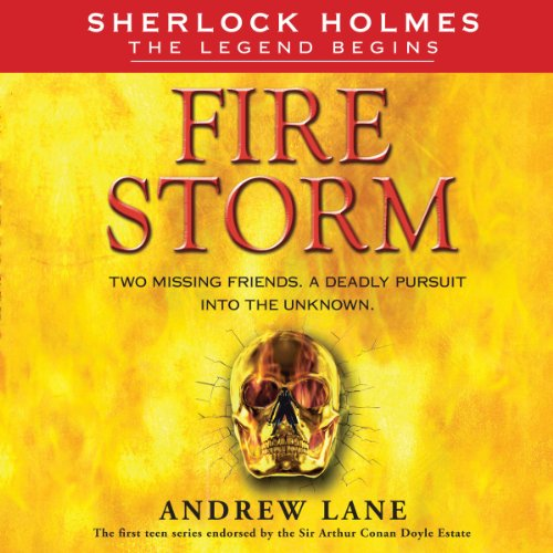 Fire Storm audiobook cover art
