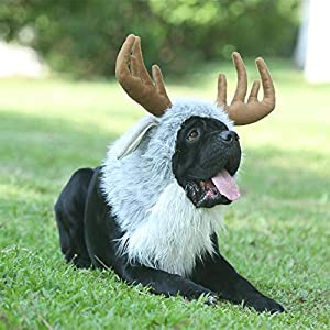 Onmygogo Funny Moose Costumes for Dog, Cute Furry Pet Wig for Halloween Christmas, Pet Clothing Accessories (Moose, Size L)