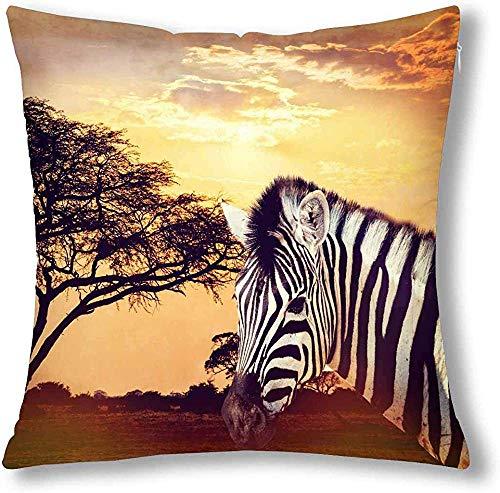 Zebra Portrait auf afrikanischem Sonnenuntergang, Afrika, Safari, Wildtierdekoration, Dekokissenbezug, Kissenbezug mit Reißverschluss, Baumwolle und Leinen, Kissenbezug, baumwolle, multi, 41 x 41 cm