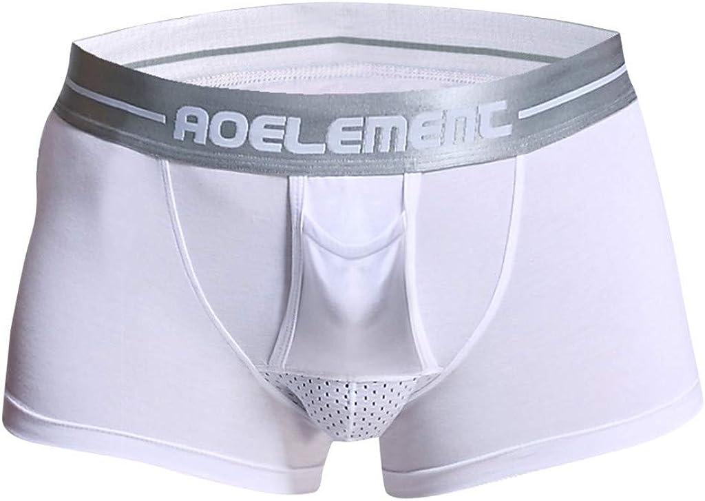 UOKNICE MEN-TOPS Mens Sheer Mesh Ice Silk Bugle Pouch Boxer Briefs Seamless Lingerie Underpants