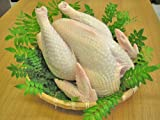 特産地鶏 青森シャモロック 中抜き丸鶏1羽