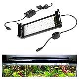 Lueigmo Éclairage Aquarium LED, 7.5W Rampe LED Aquarium RGB Lumière Naturel Spectre Complet pour 30-50CM Aquarium avec