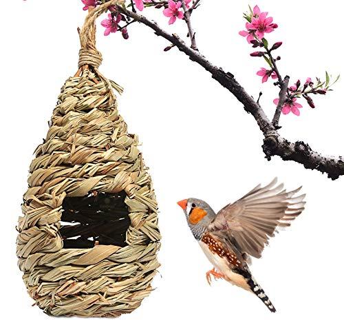 Sonnenhut aus Sonnengras, gemütlicher Rastplatz für Vögel, bietet Schutz vor Kälte, Vogelschutz vor Raubtieren, handgewebte Tropfenform, ideal für Finch & Canary Islands